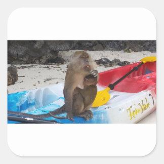 Sticker Carré Mère et bébé de singe