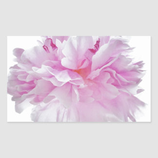 Sticker Rectangulaire Lovely Bright clignote Peony Flower Photo