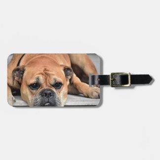 Stier-Hund Gepäckanhänger