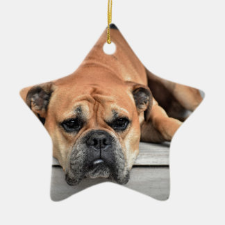Stier-Hund Keramik Ornament