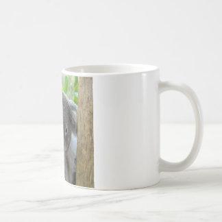 Stillstehen, glücklicher Koala Kaffeetasse