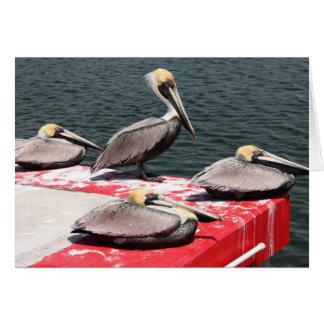 Stillstehende Pelikane Notecard Karte
