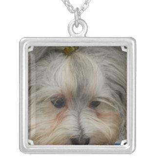 Stillstehender Havanese Hund Halskette Mit Quadratischem Anhänger