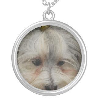 Stillstehender Havanese Hund Halskette Mit Rundem Anhänger