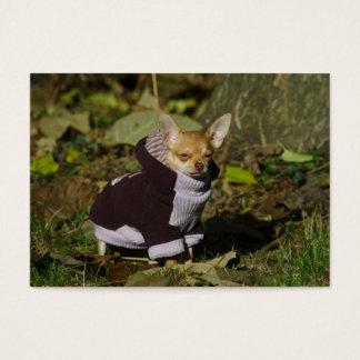 Stilvoller gekleideter Chihuahua-Welpe Visitenkarte