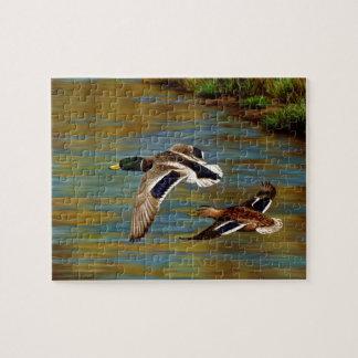 Stockente duckt das Fliegen über Teich