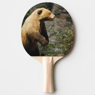 Stolzer Bär Tischtennis Schläger