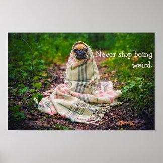Stoppen Sie nie, sonderbarer Mops in der Decke zu Poster