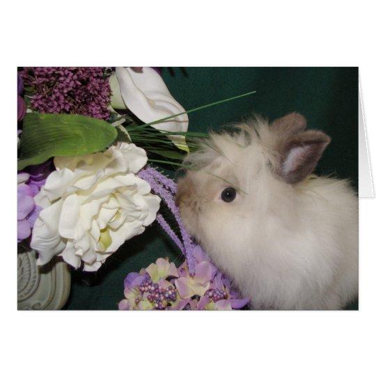 Stoppen Sie und riechen Sie die Blumen 3 Mitteilungskarte