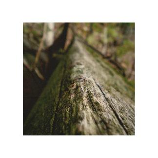 Strahl Holzdruck