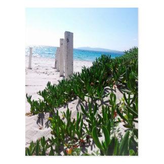 Strand bei Alghero Sardinien - Postkarte