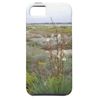 Strand im Herbst iPhone 5 Case