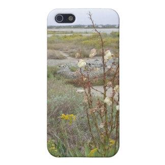 Strand im Herbst iPhone 5 Etuis