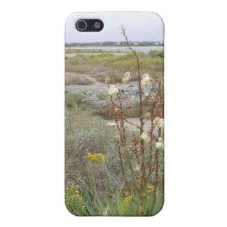 Strand im Herbst iPhone 5 Schutzhülle