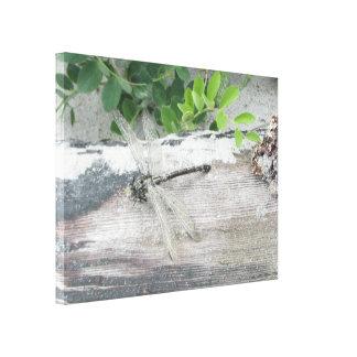 Strand-Libellen-Galerie-Leinwand durch Leinwanddruck