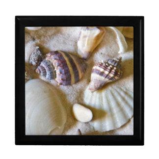 Strand-Muschel-Thema #2 Große Quadratische Schatulle