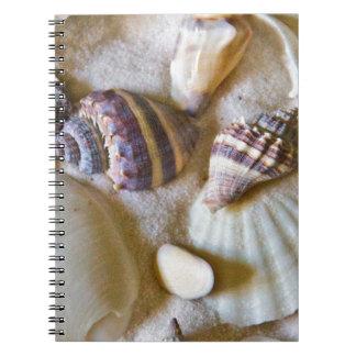 Strand-Muschel-Thema #2 Spiral Notizblock