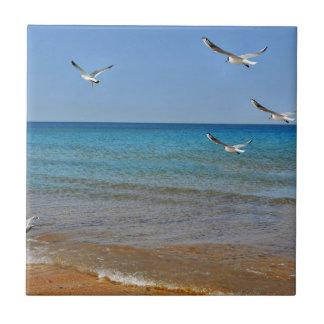Strand und Seemöwen Fliese