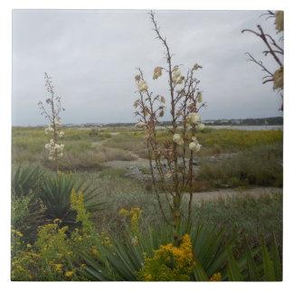Strand-Wolken und Wildblumen - Eichen-Insel, NC Fliese