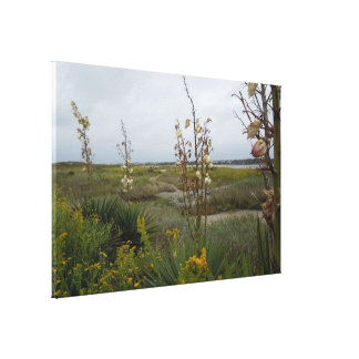 Strand-Wolken und Wildblumen - Eichen-Insel, NC Leinwanddruck