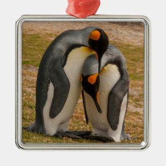 Streichelnde König-Pinguine, Falkland Quadratisches Silberfarbenes Ornament