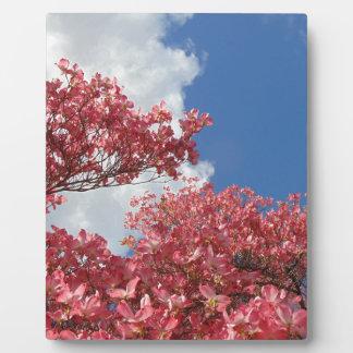 Strom der Blüten Fotoplatte