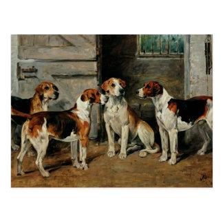 Studie der Jagdhunde Postkarte