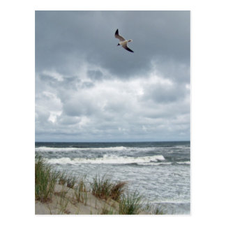 Stürmisches Meer Postkarte