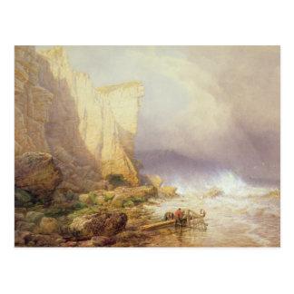 Stürmisches Wetter, klärenSeaton Klippen Postkarte