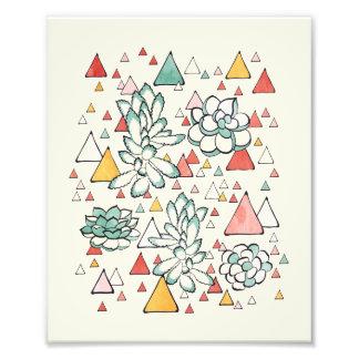 Succulent-und Dreiecke Foto-Druck Fotodruck