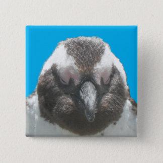 Südafrikanischer Pinguin-Gesichts-Knopf Quadratischer Button 5,1 Cm