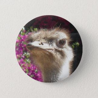 Südafrikanischer Strauß-Gesichts-Knopf Runder Button 5,1 Cm