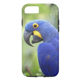 Südamerika, Brasilien, Pantanal. Gefährdet iPhone 8/7 Hülle