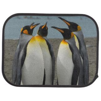Südgeorgia. Saint Andrews. König-Pinguine 8 Automatte