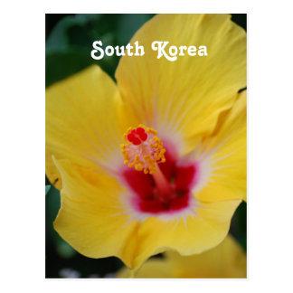 Südkoreanischer Hibiskus Postkarte