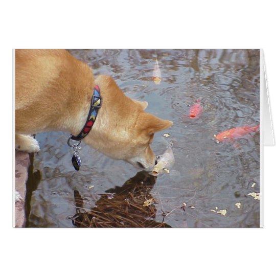 Suki küsst Koi Grußkarte