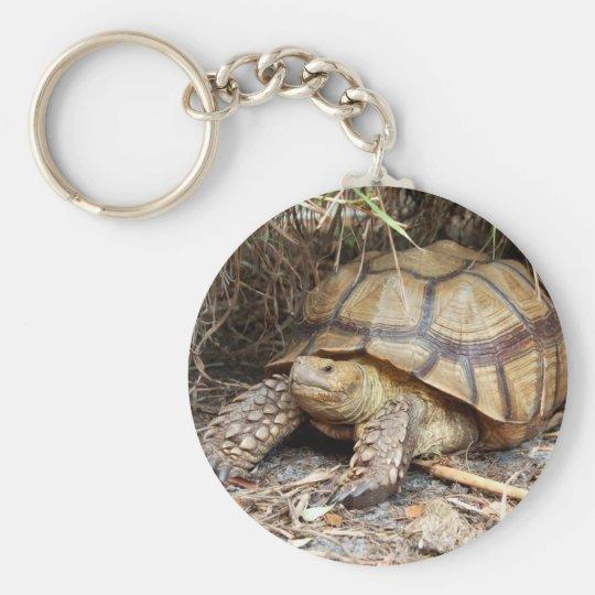 Sulcata Schildkröte Chillin Standard Runder Schlüsselanhänger
