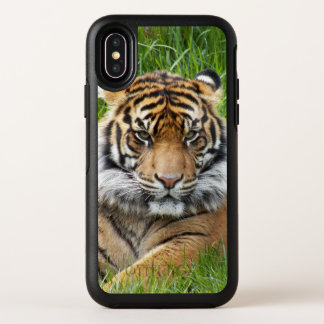 Sumatran Tiger-Foto OtterBox Symmetry iPhone X Hülle