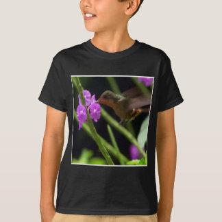 Summenvogel über niedlichen Kolibris 99 der rosa T-Shirt