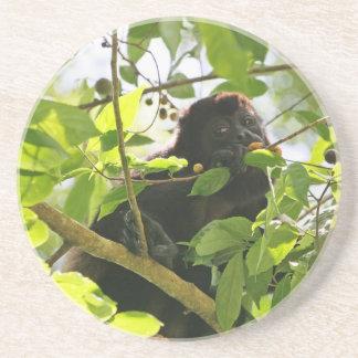 Summer-Affe, der im Dschungel isst Sandstein Untersetzer