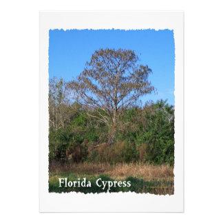 Sumpf-Vertikale Floridas Zypresse Personalisierte Einladungskarten