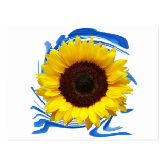 Sun-Lichter Anmut Postkarte