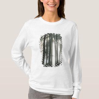 Sunbeams, die durch Bäume, der Mount Rainier T-Shirt