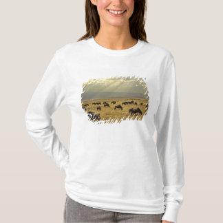 Sunbeams und Wildebeest, Connochaetes taurinus T-Shirt
