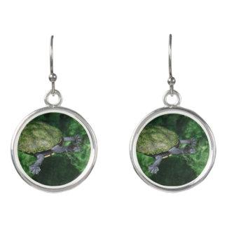 Suppenschildkröte-Ohrringe Ohrringe