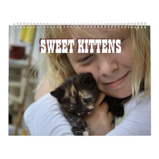 Süße Kätzchen 2018 Wandkalender