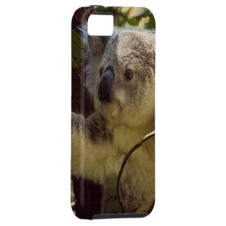 süßer Koala 2b Hülle Fürs iPhone 5