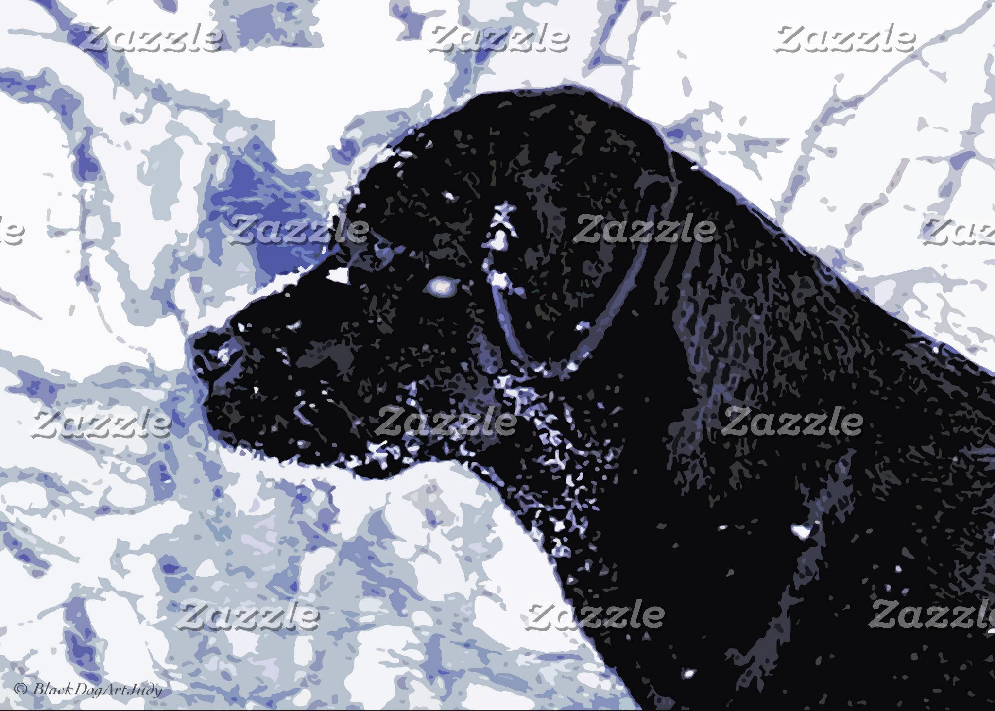 Black Labrador - Arctic