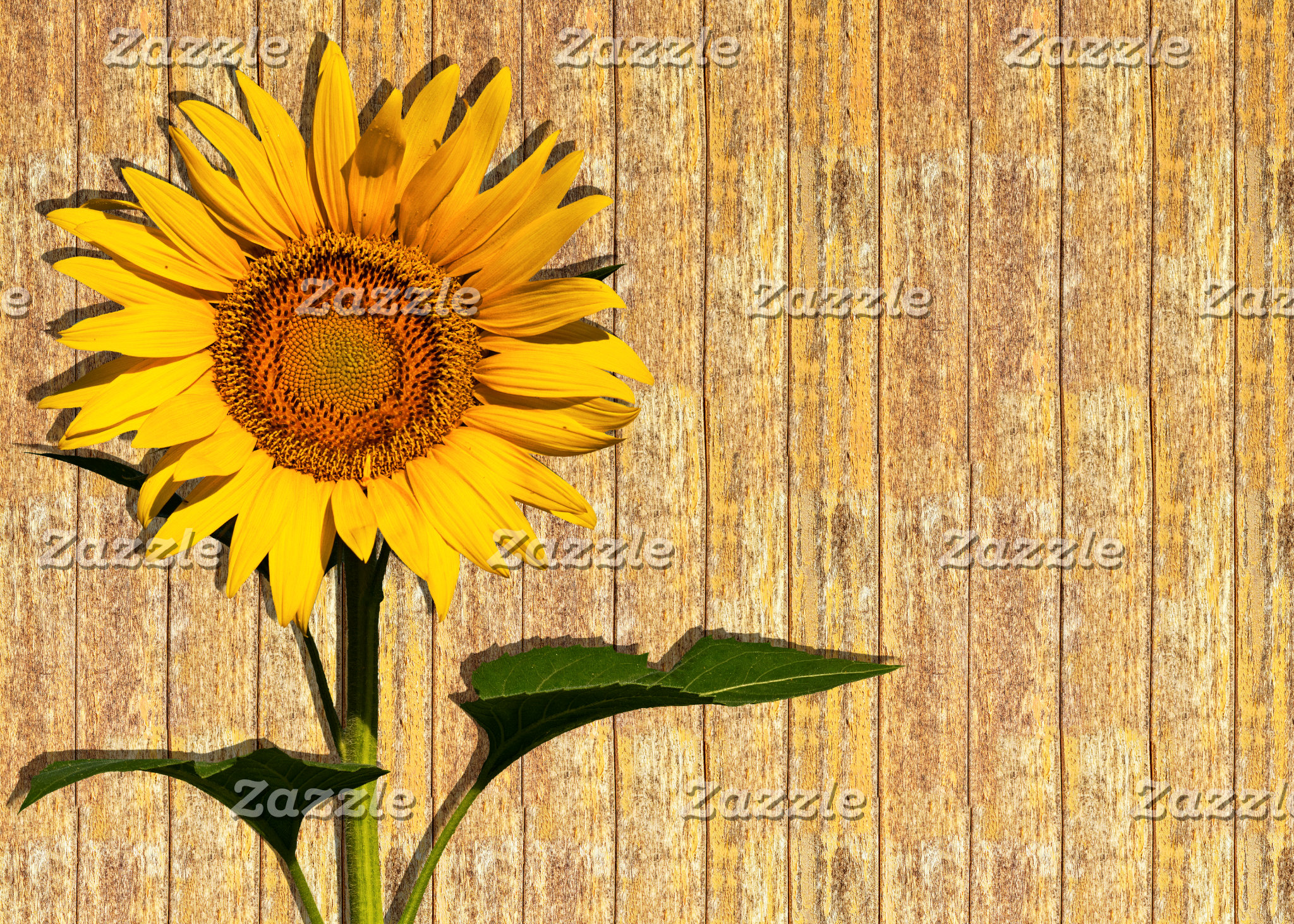 Sunflower And Wood Wedding Collection