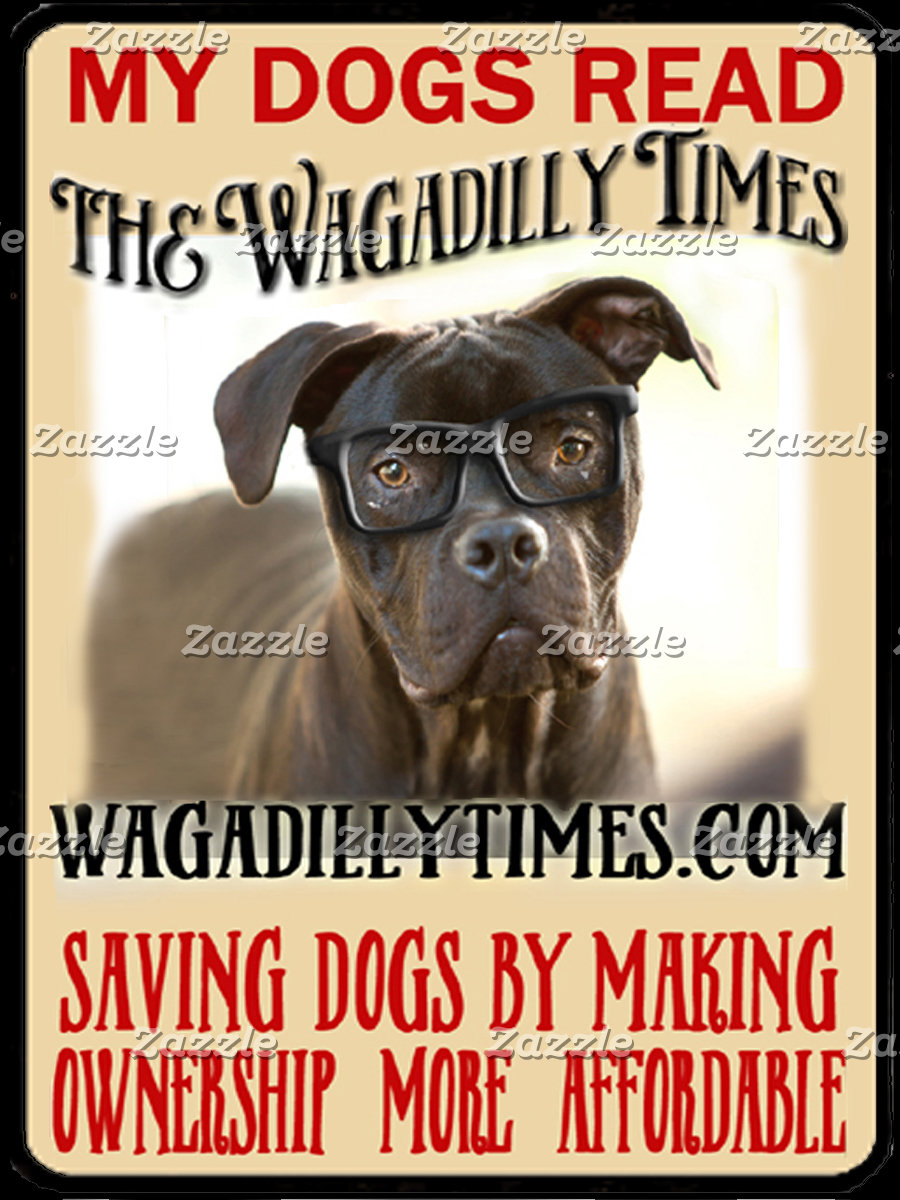 Wagadilly Times